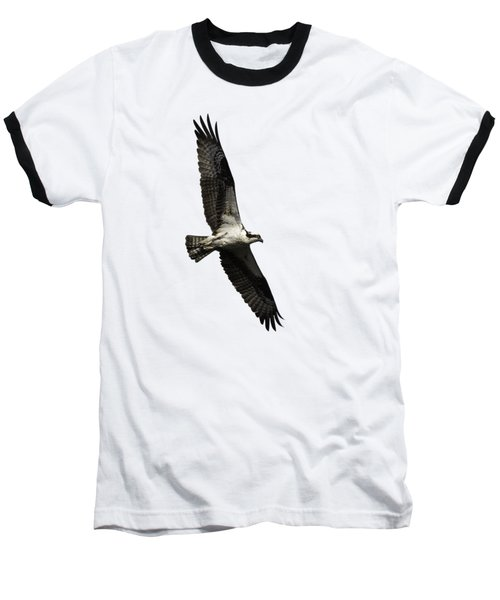 Isolated Osprey 2019-3 Baseball T-Shirt