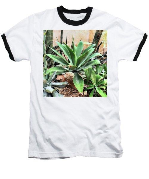 Lion's Tail Agave Baseball T-Shirt