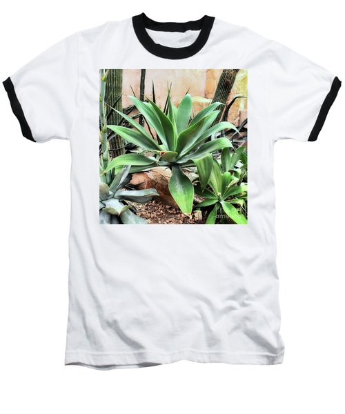 Lion's Tail Agave Baseball T-Shirt