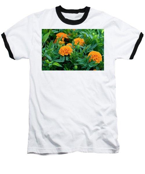 Marigolds Baseball T-Shirt