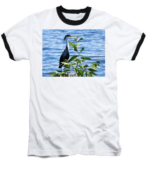 Pied Heron Tree Baseball T-Shirt