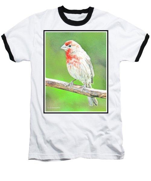 Purple Finch, Animal Portrait Baseball T-Shirt
