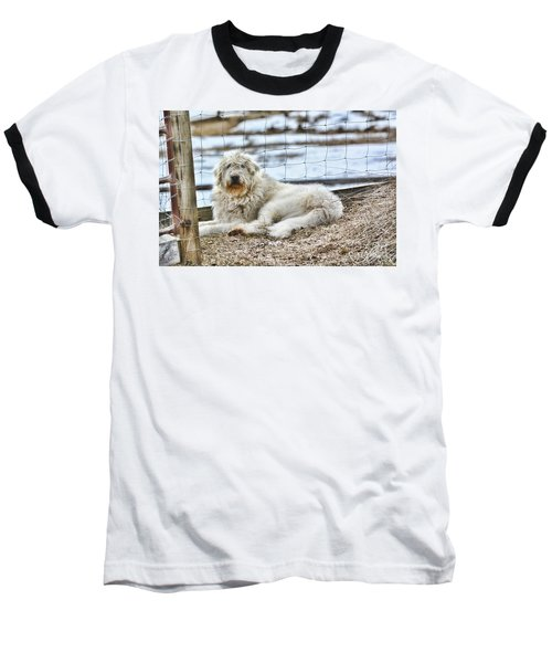 Ranch Hand Baseball T-Shirt