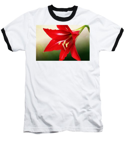 Red Lily Flower Baseball T-Shirt