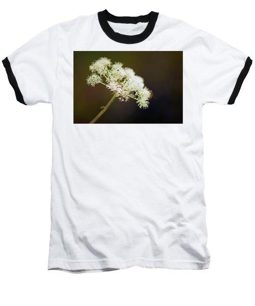 Scotland. Loch Rannoch. White Flowerhead. Baseball T-Shirt