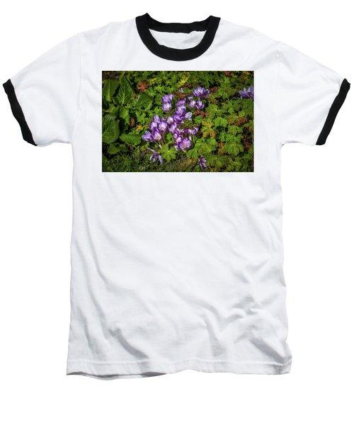 September Crocus #h9 Baseball T-Shirt