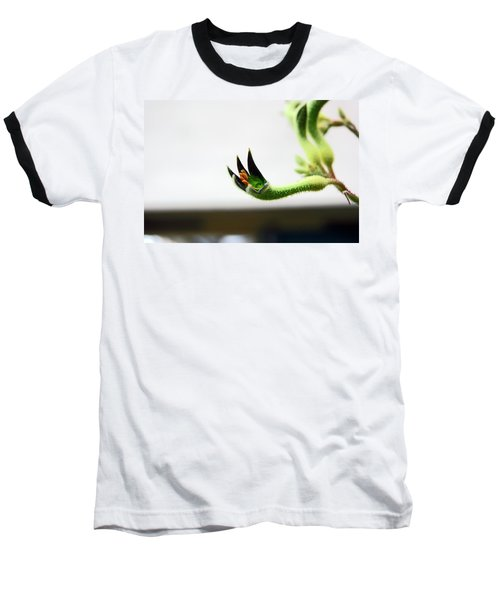 Sheffield. The Botanical Gardens Pavillions Baseball T-Shirt