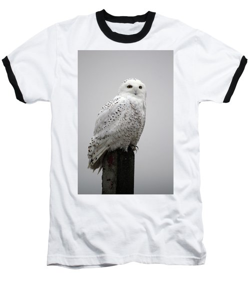 Snowy Owl In Fog Baseball T-Shirt