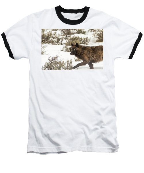 W5 Baseball T-Shirt
