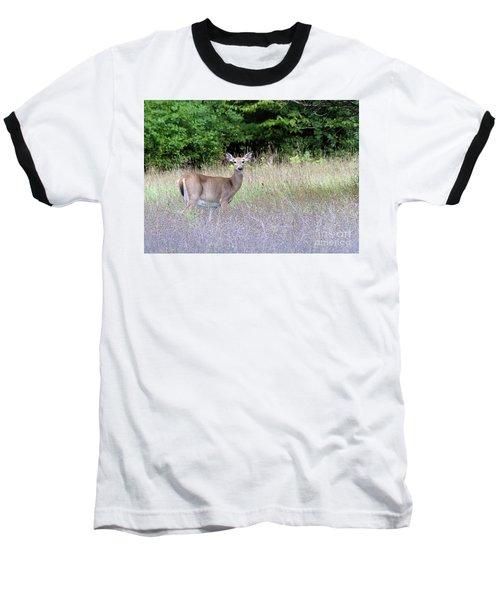 White Tale Deer Baseball T-Shirt