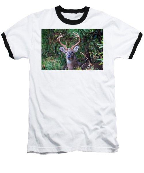 Whitetail Deer Baseball T-Shirt