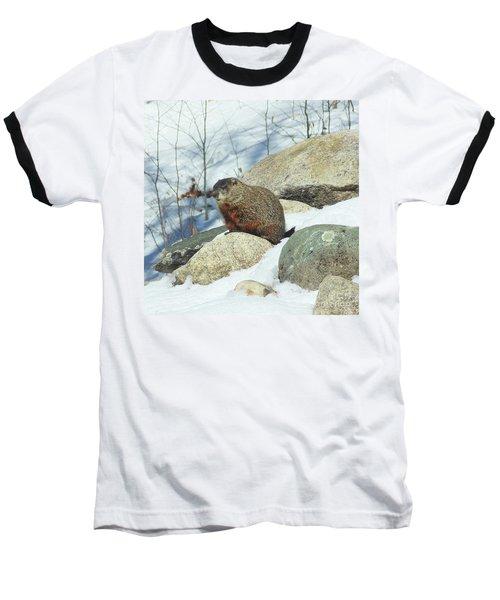 Winter Groundhog Baseball T-Shirt