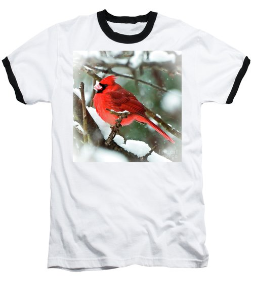 Winter Red Bird - Male Northern Cardinal With A Snow Beak Baseball T-Shirt
