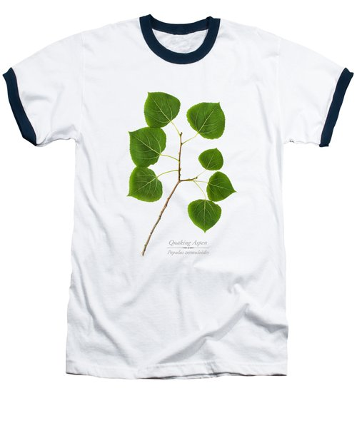 Baseball T-Shirt featuring the photograph Quaking Aspen by Christina Rollo