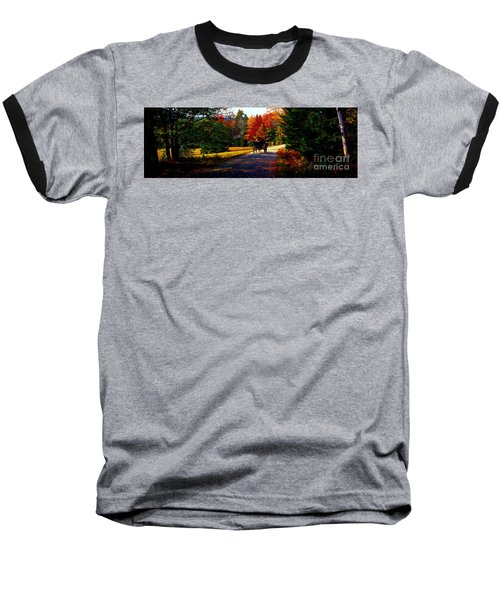 Baseball T-Shirt featuring the photograph  Acadia National Park Carriage Trail Fall  by Tom Jelen
