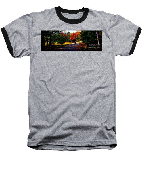 Acadia National Park Carriage Trail Fall  Baseball T-Shirt