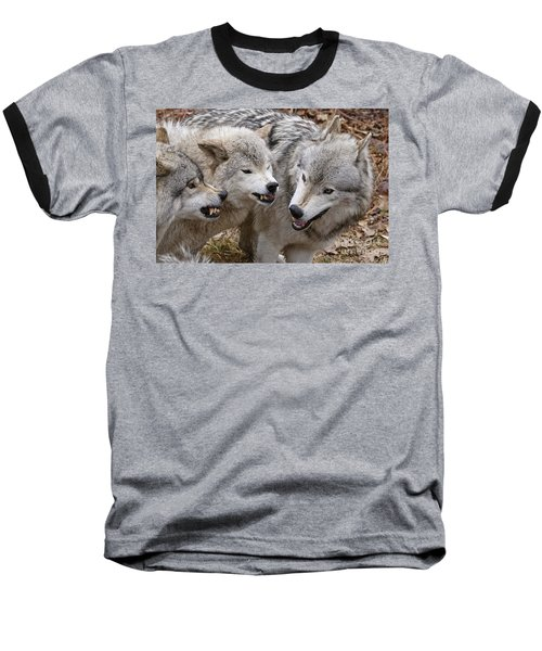 Baseball T-Shirt featuring the photograph  Alpha Displeasure 2 by Wolves Only