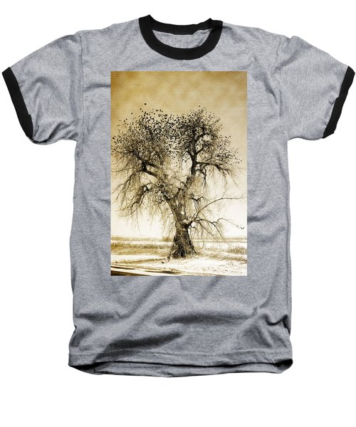 Bird Tree Fine Art  Mono Tone And Textured Baseball T-Shirt