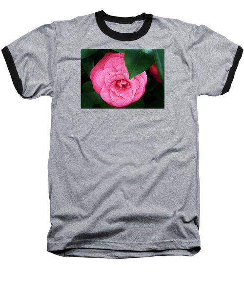 Camellia Japonica ' Elizabeth Weaver ' Baseball T-Shirt by William Tanneberger