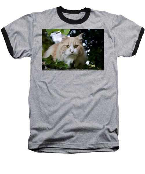 Cream And White Cat Baseball T-Shirt