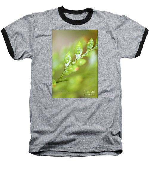 Fern Fronds Baseball T-Shirt