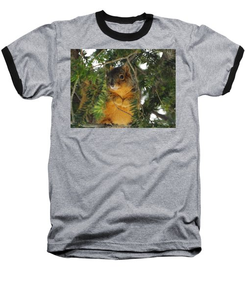 Fox Squirrel Baseball T-Shirt