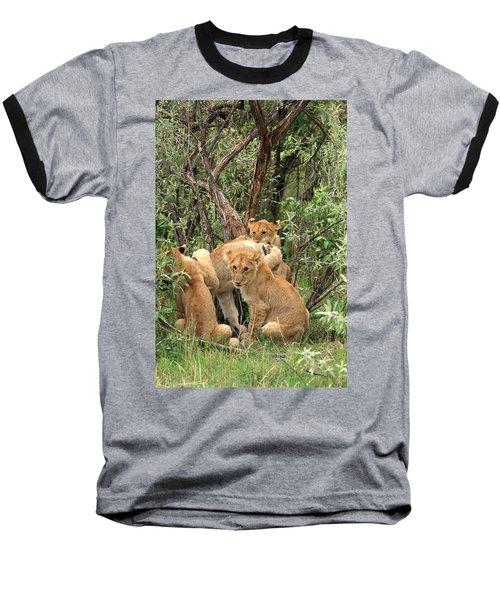 Masai Mara Lion Cubs Baseball T-Shirt by Aidan Moran