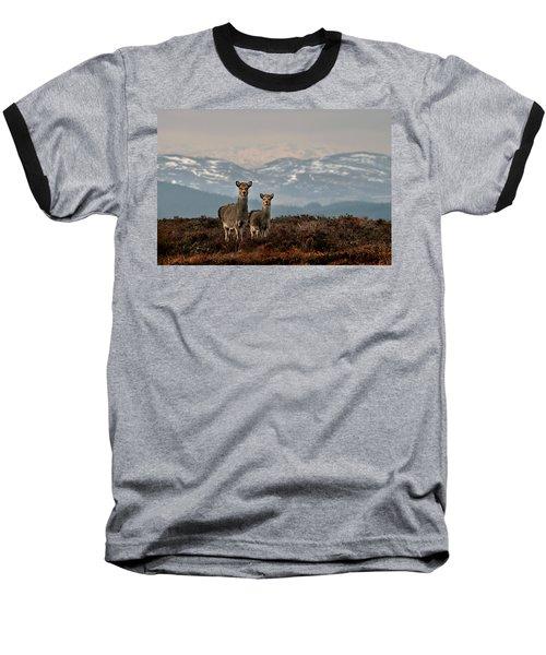 Sika Deer Baseball T-Shirt