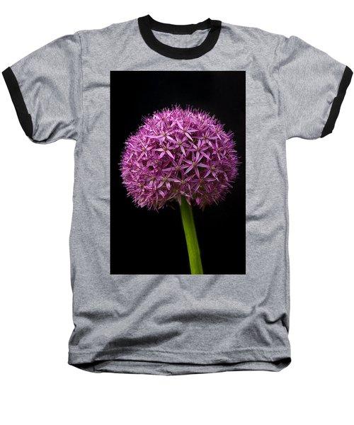 Single Purple Allium Baseball T-Shirt