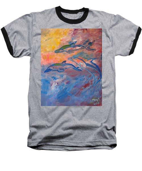 Soaring Dolphins Baseball T-Shirt