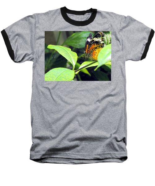 Tiger Wings Baseball T-Shirt