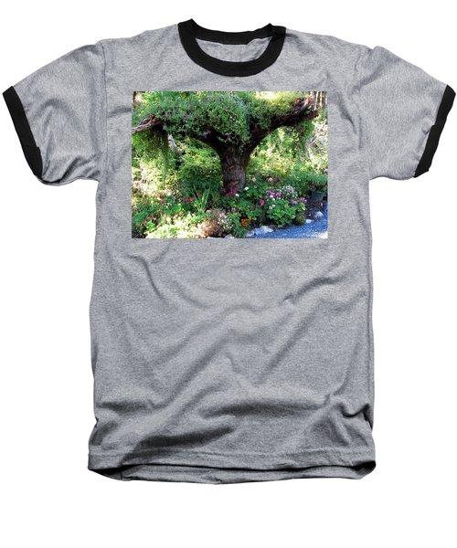 Baseball T-Shirt featuring the photograph  Upside Down Tree by Jennifer Wheatley Wolf