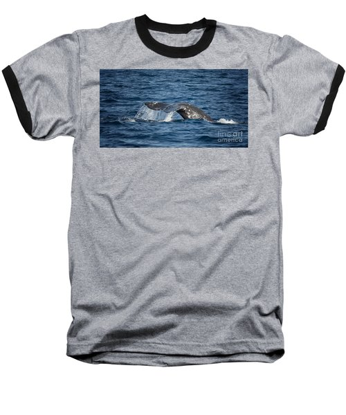 Whale Fluke In Dana Point Baseball T-Shirt