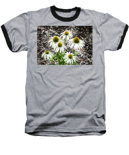 Baseball T-Shirt featuring the photograph  White Echinacea by Paul Mashburn