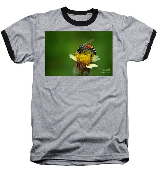 Working Bee Baseball T-Shirt by Michelle Meenawong