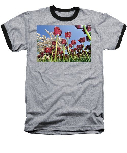 Baseball T-Shirt featuring the photograph 090416p029 by Arterra Picture Library