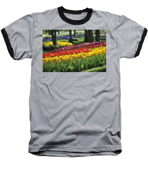 Baseball T-Shirt featuring the photograph 090811p123 by Arterra Picture Library