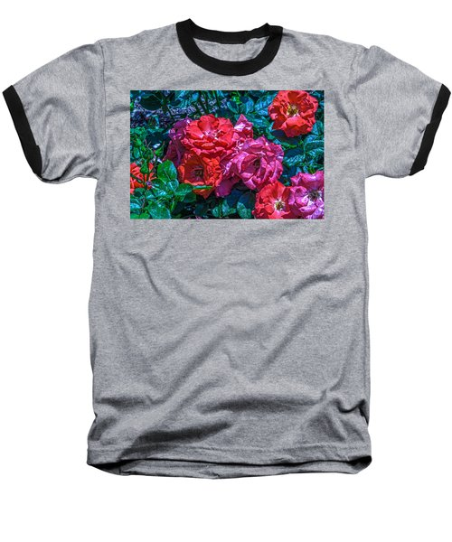 A Rose Is A Rose Baseball T-Shirt by Richard J Cassato