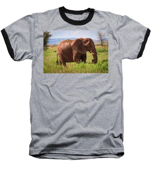 African Desert Elephant Baseball T-Shirt