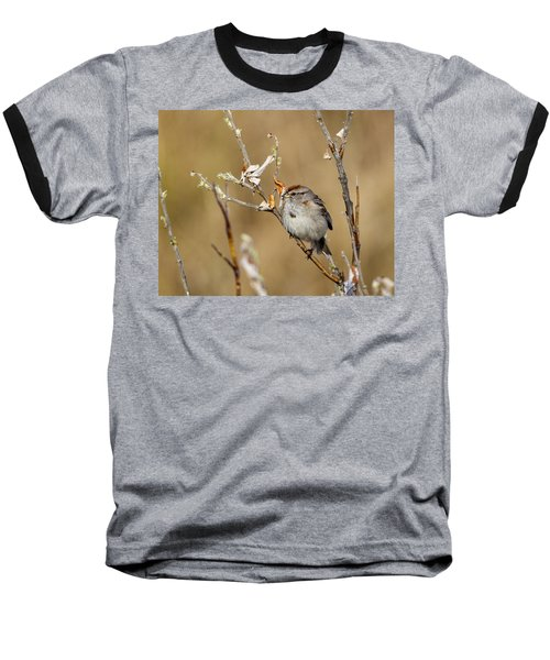 American Tree Sparrow Baseball T-Shirt