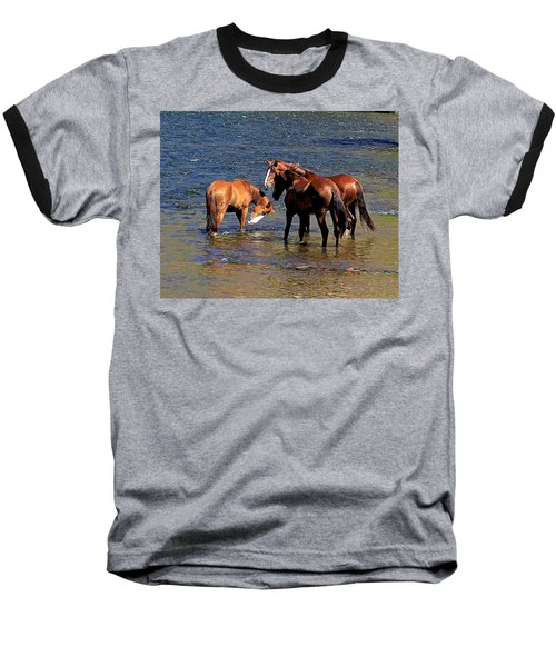Arizona Wild Horses On The Salt River Baseball T-Shirt