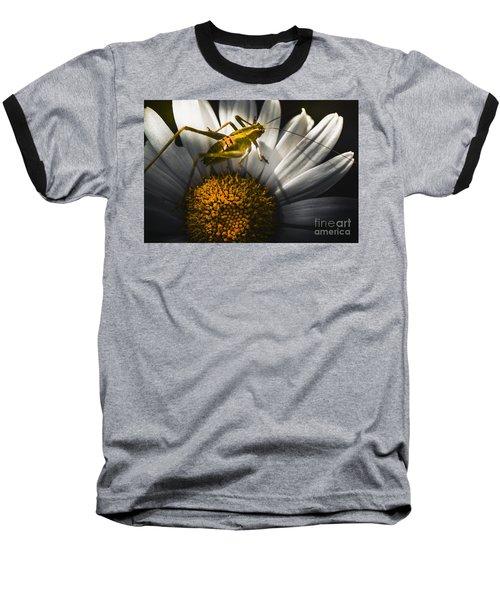 Australian Grasshopper On Flowers. Spring Concept Baseball T-Shirt by Jorgo Photography - Wall Art Gallery
