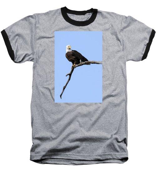Bald Eagle 7 Baseball T-Shirt