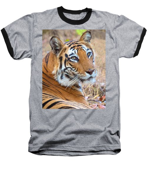 Bandhavgarh Tigeress Baseball T-Shirt by David Beebe