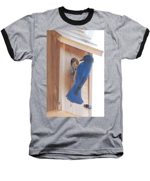 Bluebird Of Happiness Baseball T-Shirt