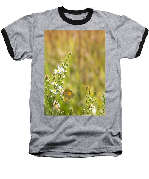 Butterfly In A Field Of Flowers Baseball T-Shirt