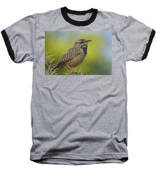 Cactus Wren  Baseball T-Shirt by Saija  Lehtonen