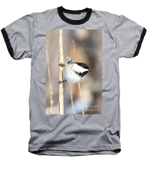 Black Capped Cutie Baseball T-Shirt by Heather King