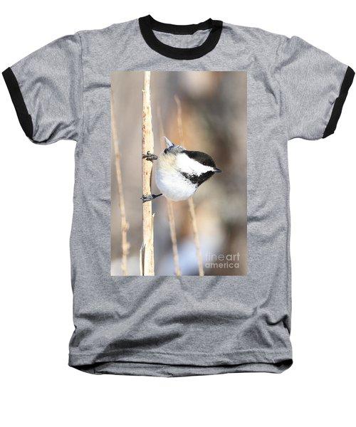 Black Capped Cutie Baseball T-Shirt