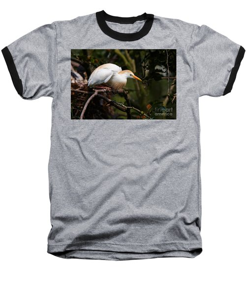 Cattle Egret In A Tree Baseball T-Shirt